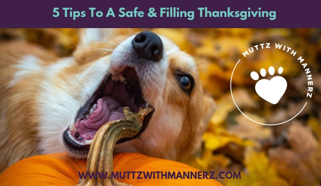 5 Tips To A Safe & Filling Thanksgiving