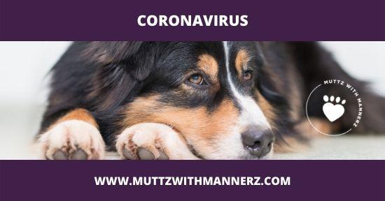 Coronavirus Update from Muttz with Mannerz