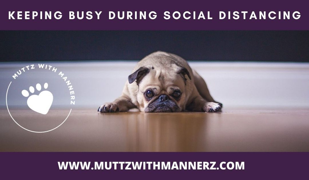 Keeping Busy During Social Distancing