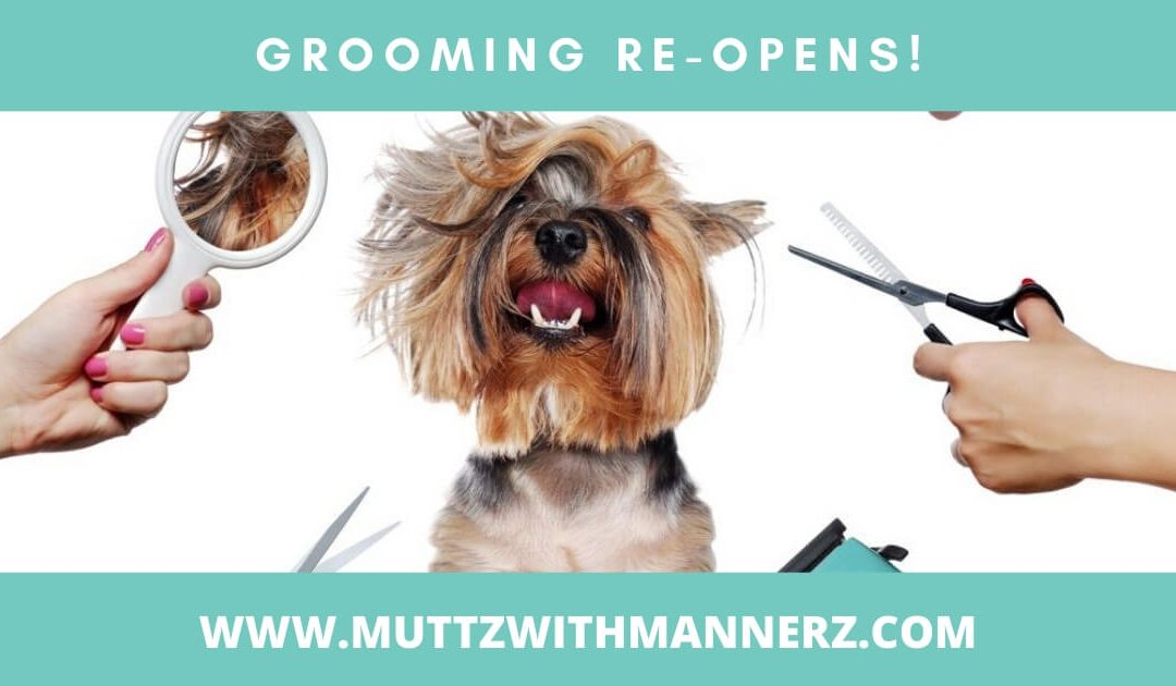 Grooming Re-opens!