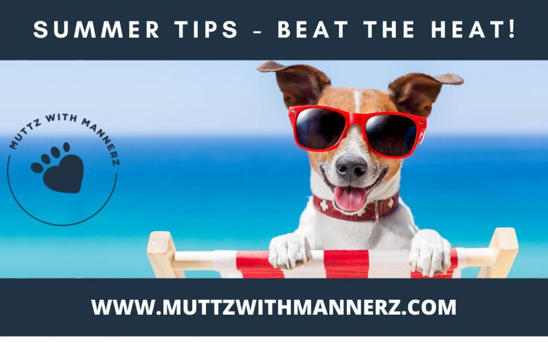 Summer Tips to Beat The Heat