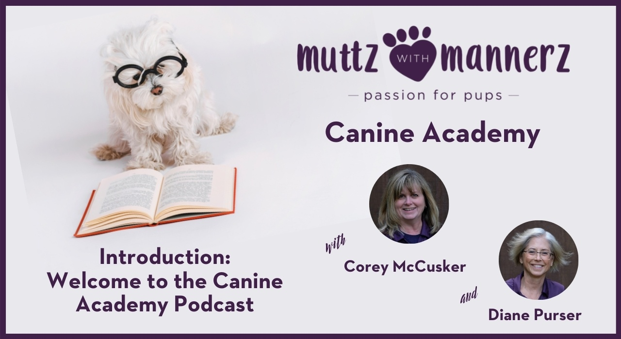 Welcome to the Muttz with Mannerz Canine Academy Podcast