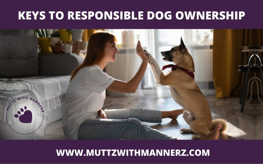 Keys to Responsible Dog Ownership